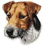Parson - Jack Russell Terrier 3